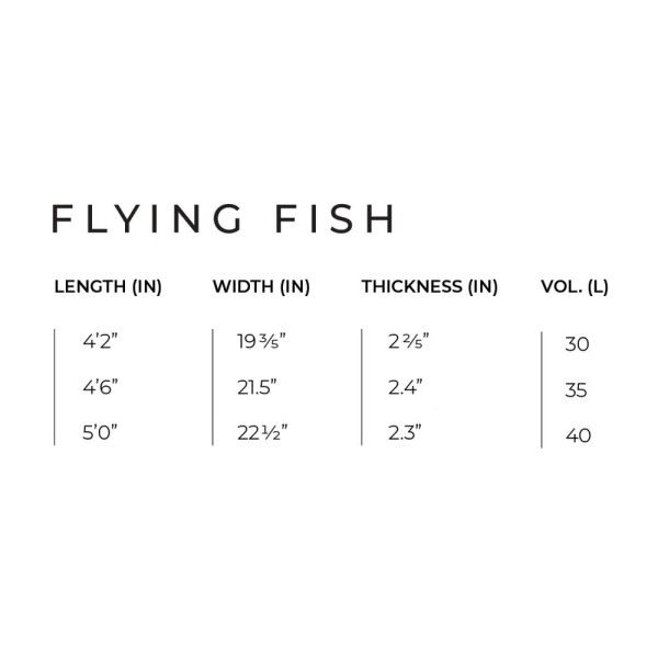 Slingshot Foilboard FLYING FISH V1 - WING / SURF